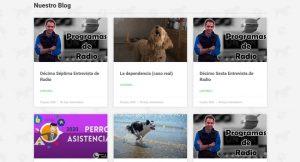 Blog Perro Asistencia