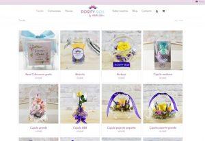 Tienda online Rosifybox